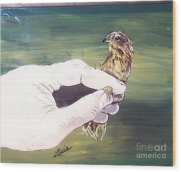 A Bird In Hand Wood Print by Lucia Grilletto