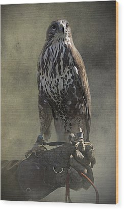 Wood Print featuring the photograph A Bird In The Hand by Ethiriel  Photography