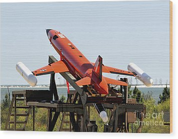 A Bqm-167a Subscale Aerial Target Wood Print by Stocktrek Images