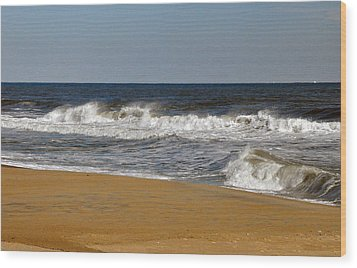 Wood Print featuring the photograph A Brisk Day by Sarah McKoy