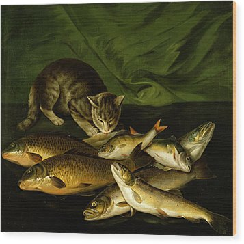 A Cat With Trout Perch And Carp On A Ledge Wood Print by Stephen Elmer