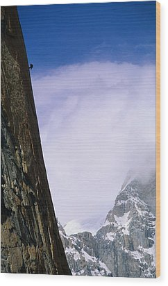 A Climber Rappels Down The Sheer Wood Print by Bill Hatcher