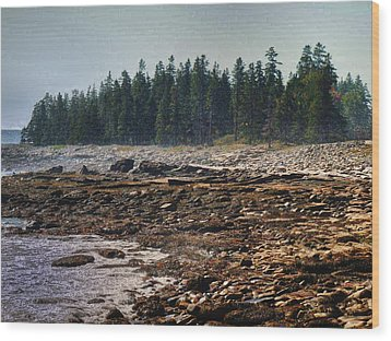 Wood Print featuring the photograph A Cloudy Day by Kelly Reber