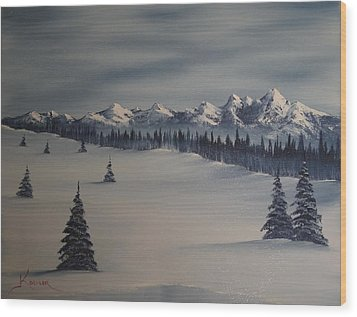 A Cold Winter Slope Wood Print by John Koehler