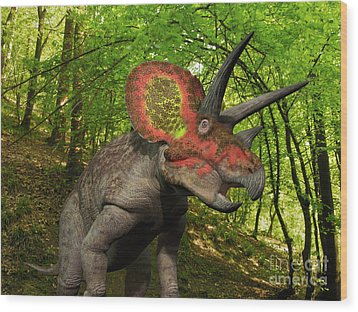 A Colorful Triceratops Wanders Wood Print by Walter Myers
