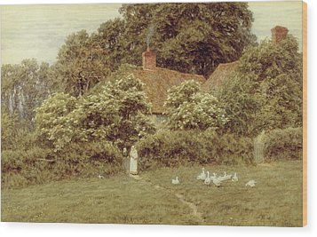 A Cottage At Farringford Isle Of Wight Wood Print by Helen Allingham