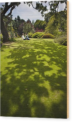 A Couple Sits On A Dappled Lawn Wood Print by Taylor S. Kennedy