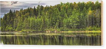 A Day In The Forest Of Maine Wood Print by Gary Smith