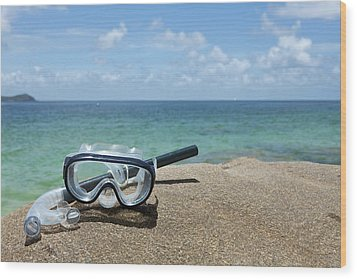 A Diving Mask And Snorkel On A Rock Near The Sea Wood Print by Caspar Benson