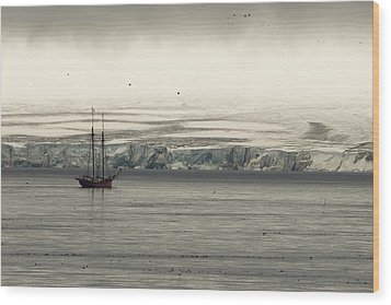A Double-masted Sailboat Floats Near An Wood Print by Norbert Rosing