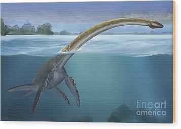 A Elasmosaurus Platyurus Swims Freely Wood Print by Sergey Krasovskiy