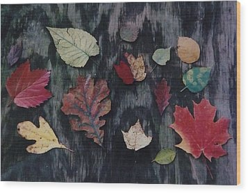 Wood Print featuring the photograph A Fall Of Color by Gerald Strine