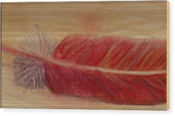 A Feather I Found Wood Print by Anne-Elizabeth Whiteway