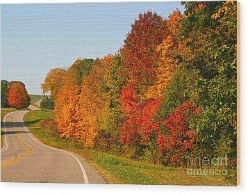 A Fine Fall Day Wood Print by Joan McArthur