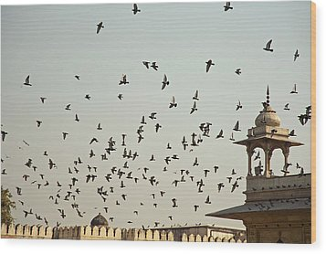 A Flock Of Pigeons Crowding One Of The Structures On Top Of The Red Fort Wood Print by Ashish Agarwal
