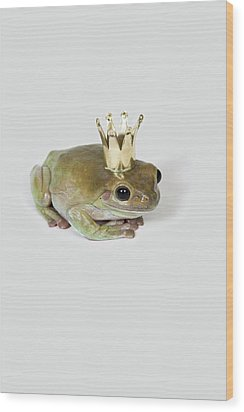 A Frog Wearing A Crown, Studio Shot Wood Print by Paul Hudson