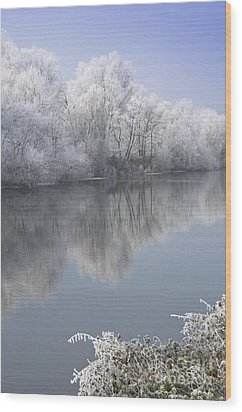 A Frosty River Severn Wood Print by Andrew  Michael