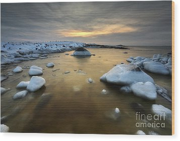 A Frozen, Rusty Bay On Andoya Island Wood Print by Arild Heitmann