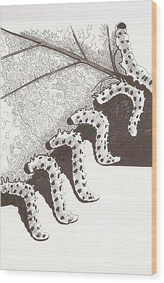 A Furry Feast Wood Print by Pat Barker