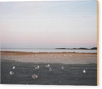 Wood Print featuring the photograph A Gathering On Rehoboth Bay by Pamela Hyde Wilson