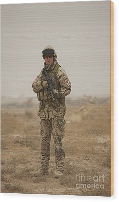 A German Army Soldier Armed With A M4 Wood Print by Terry Moore