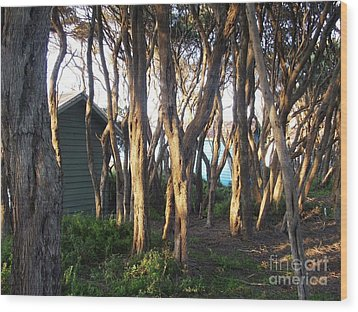 A Glimpse Of Paradise Wood Print by Therese Alcorn
