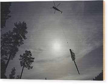 A Helicopter Lifts Cut Timber Wood Print by Joel Sartore
