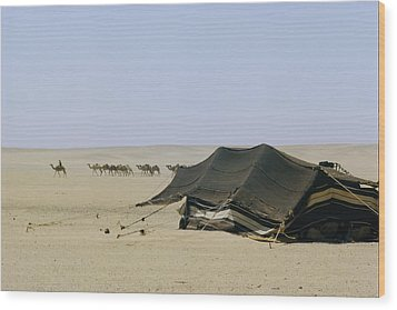 A Herd Of Camels Heading Wood Print by W. Robert Moore
