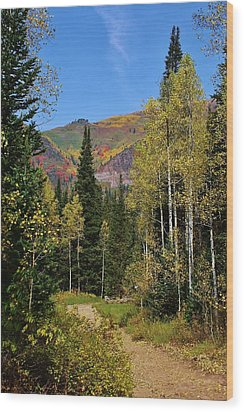 A Hike Through The Mountains Wood Print by Bruce Bley