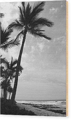 Wood Print featuring the photograph A Hui Hou - Until We Meet Again by Kerri Ligatich