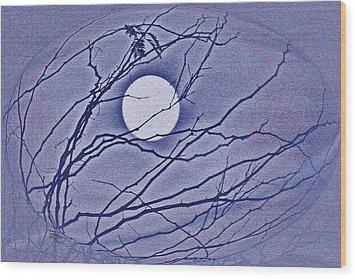 A Las Vegas January Full Moon Wood Print by Carl Deaville