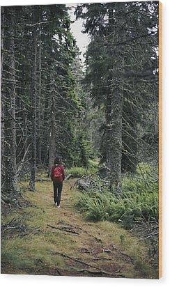 A Lone Hiker Enjoys A Wooded Trail Wood Print by Tim Laman