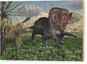 A Lone Torosaurus Dinosaur Feeding Wood Print by Mark Stevenson