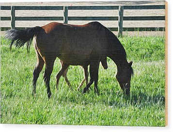 A Mother And Little One Wood Print by Bill Cannon