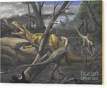 A Neovenator Salerii Is Approached Wood Print by Sergey Krasovskiy