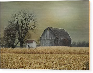 Wood Print featuring the photograph A New Dawn by Mary Timman