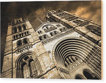 A Night At The Museum Wood Print by Jez C Self