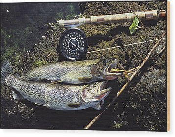 A Pair Of Cutthroat Trout, Salmo Wood Print by Bill Curtsinger