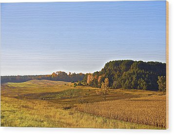 A Pastoral Scene Wood Print by Sheryl Thomas