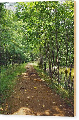 A Path Around The Pond Wood Print by Robert Margetts
