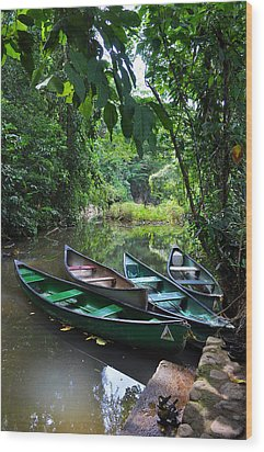Wood Print featuring the photograph A Peaceful Place by Li Newton