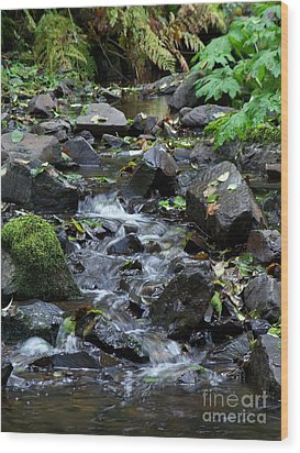 Wood Print featuring the photograph A Peaceful Stream by Chalet Roome-Rigdon