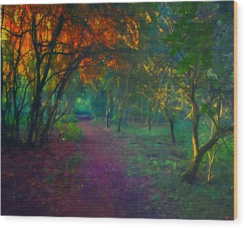 Wood Print featuring the painting A Place Of Mystery by Joe Misrasi