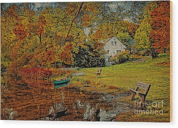 Wood Print featuring the photograph A Pond View by Gina Cormier