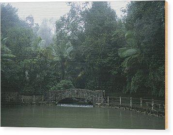 A Rainstorm In El Yunque, Puerto Rico Wood Print by Taylor S. Kennedy