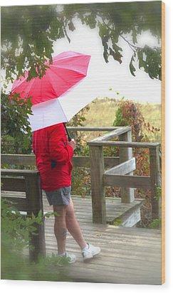A Rainy Summer's Day Wood Print by Karol Livote