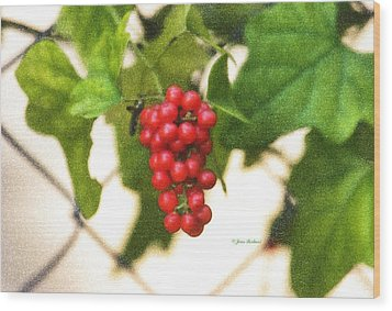 Wood Print featuring the photograph A Red Cluster by Joan Bertucci