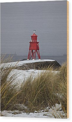 A Red Lighthouse Along The Coast South Wood Print by John Short