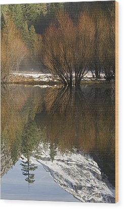 A Reflection Of Fall Trees In Mirror Wood Print by Rich Reid