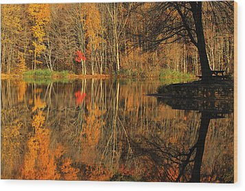 A Reflection Of October Wood Print by Karol Livote
